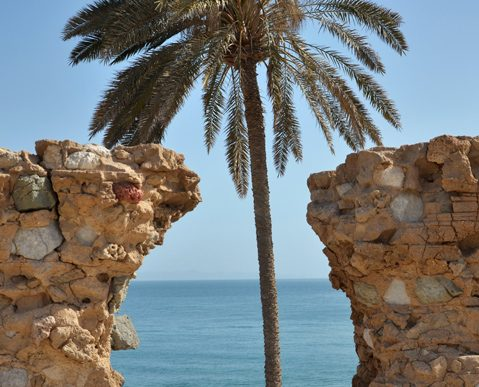 جزيرة قشم والزيارة الأولى